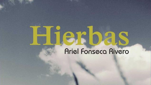 hierbas-ariel-fonseca